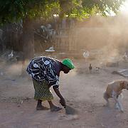 Sweeping woman and lazy dog. Segou, Mali