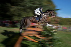 Viklund Therese (SWE) - Diabolique<br /> Cross country 6 years old horses<br /> Mondial du Lion - Le Lion d'Angers 2014<br /> © Dirk Caremans<br /> 18/10/14