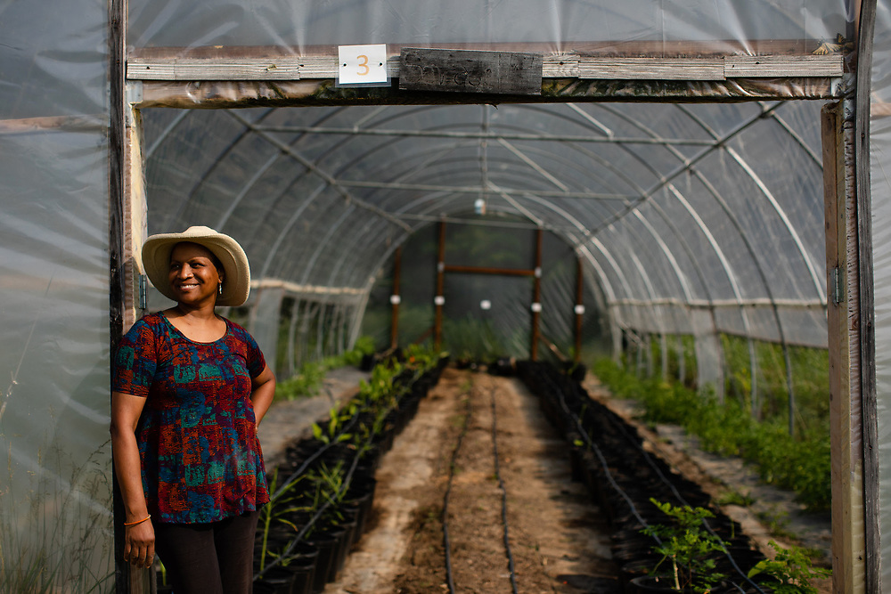Ann Codrington poses for a portrait in front of her greenhouses where she grows turmeric and ginger at her farm (Nisani Farm) near Phenix, Virginia.