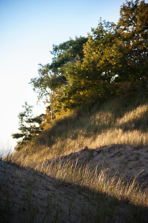 Sunset in dunes along Lake Michigan.