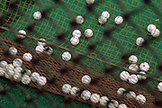 view through a net of a pile of golf balls