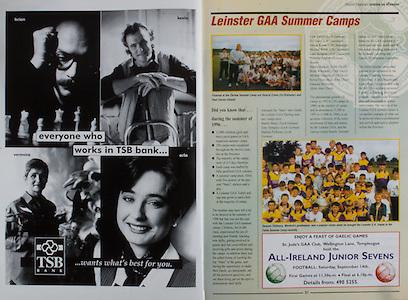 All Ireland Senior Hurling Championship - Final,.01.09.1996, 09.01.1996, 1st September 1996,.01091996AISHCF, .Wexford v Limerick,.Wexford 1-13, Limerick 0-14,.TSB Bank, Leinster GAA Summer Camps,.