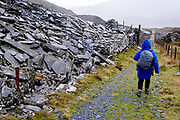 A walker descends a public footpath in the rain, once an industrial track for the slate mining industry, on 5th October 2021, in Blaenau Ffestiniog, Gwynedd, Wales. The derelict slate mines around Blaenau Ffestiniog in north Wales were awarded UNESCO World Heritage status in 2021. The industry's heyday was the 1890s when the Welsh slate industry employed approximately 17,000 workers, producing almost 500,000 tonnes of slate a year, around a third of all roofing slate used in the world in the late 19th century. Only 10% of slate was ever of good enough quality and the surrounding mountains now have slate waste and the ruined remains of machinery, workshops and shelters have changed the landscape for square miles.