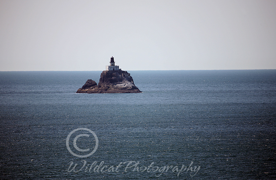 Terrible Tilly Lighthouse
