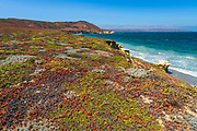 Skunk Point, Santa Rosa Island, Channel Islands National Park, California USA