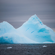 A blue iceberg floats in the Antarctic waters of Curtis Bay, Antarctica.