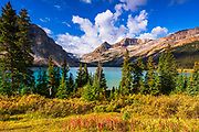 Bow Lake and the Bow Glacier, Banff National Park, Alberta, Canada