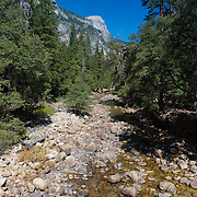 Yosemite valley creek, Yosemite national park, California, USA