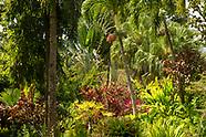 Grenada Gardens