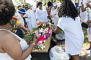 Descendants of enslaved Africans brought to Charleston in the Middle Passage select flowers to toss in the ocean to honor their relatives lost during a remembrance ceremony at Fort Moutrie National Monument June 10, 2017 in Sullivan's Island, South Carolina. The Middle Passage refers to the triangular trade in which millions of Africans were shipped to the New World as part of the Atlantic slave trade. An estimated 15% of the Africans died at sea and considerably more in the process of capturing and transporting. The total number of African deaths directly attributable to the Middle Passage voyage is estimated at up to two million African deaths.
