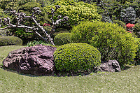 Okuma Garden or Okuma Teien is on the campus of Waseda University. The domain was once owned by Shigenobu Okuma, the founder of Waseda.  Okuma re-designed the garden adding a vast lawn, babbling brooks, seasonal plants, stone lanterns, artificial hills and a pond.  He also famously grew melons in a hothouse - the first time this was done in Japan.  Okuma donated the garden and land to Waseda after his death.  Sadly this garden was seriously damaged during WWII though in recent years it has been almost fully restored.  Its primary purpose is for rest and recreation for students at Waseda University though it is open to the public, free of charge.