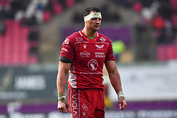 Aaron Shingler of Scarlets<br /> <br /> Photographer Craig Thomas/Replay Images<br /> <br /> Guinness PRO14 Round 11 - Scarlets v Edinburgh - Saturday 15th February 2020 - Parc y Scarlets - Llanelli<br /> <br /> World Copyright © Replay Images . All rights reserved. info@replayimages.co.uk - http://replayimages.co.uk