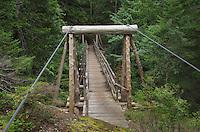 Suspension Bridge over Canyon Creek on the Suiattle River Trail, Glacier Peak Wilderness North Cascades Washington