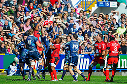 Players vie for the lineout ball during the first half of the match - Photo mandatory by-line: Rogan Thomson/JMP - Tel: Mobile: 07966 386802 21/10/2012 - SPORT - RUGBY - Cardiff Arms Park - Cardiff. Cardiff Blues v Toulon (RC Toulonnais) - Heineken Cup Round 2