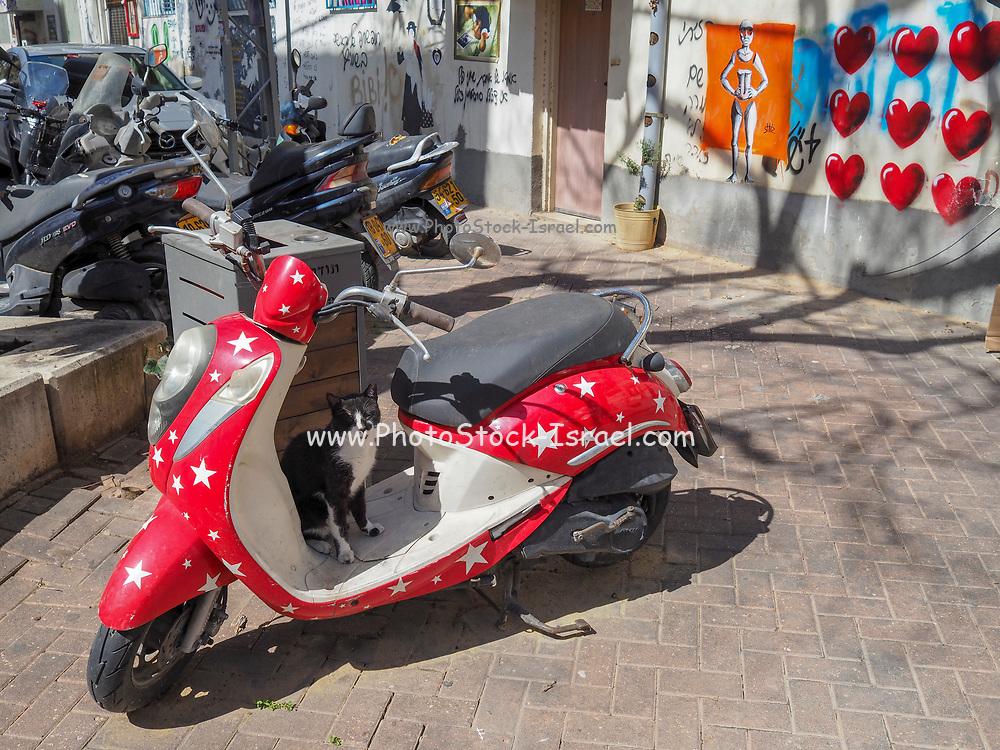 Red and white Vintage Vespa motorbike