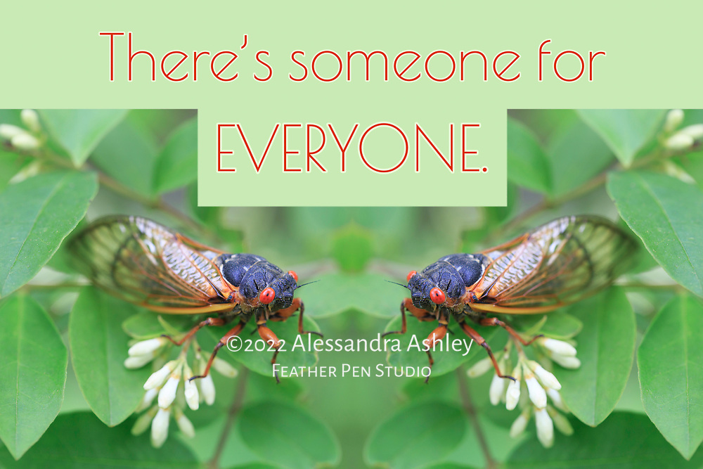 """Double exposure montage, cicada on white blooming shrub (appears to be two cicadas gazing at each other). Paired with affirmation, """"there's someone for everyone."""""""