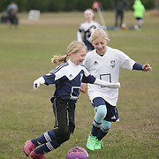 Cape Fear Soccer Club Academy soccer matches from Saturday March 1, 2014. (Jason A. Frizzelle)