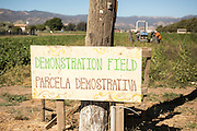 ALBA is an incubator farm program that helps farmers learn organic methods of farming and is based in Salinas, CA.
