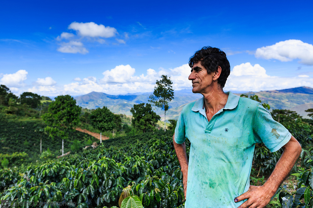 A Crediflorida client, outstanding in his coffee field.