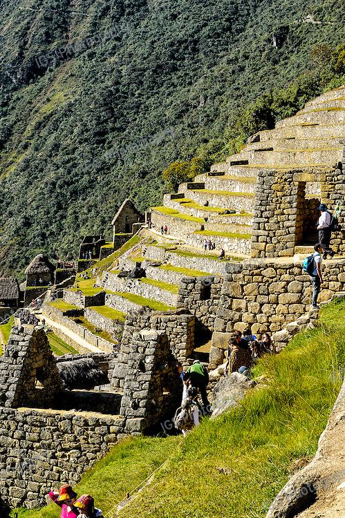 Looking out over the agricultural sector of  Machu Picchu