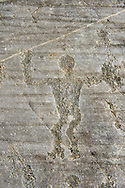 Petroglyph, rock carving, of a warrior with a shiled. Carved by the ancient Camuni people in the iron age between 1000-1600 BC. Rock no 24,  Foppi di Nadro, Riserva Naturale Incisioni Rupestri di Ceto, Cimbergo e Paspardo, Capo di Ponti, Valcamonica (Val Camonica), Lombardy plain, Italy .<br /> <br /> Visit our PREHISTORY PHOTO COLLECTIONS for more   photos  to download or buy as prints https://funkystock.photoshelter.com/gallery-collection/Prehistoric-Neolithic-Sites-Art-Artefacts-Pictures-Photos/C0000tfxw63zrUT4<br /> If you prefer to buy from our ALAMY PHOTO LIBRARY  Collection visit : https://www.alamy.com/portfolio/paul-williams-funkystock/valcamonica-rock-art.html