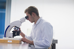 Young male scientist looking through microscope in lecture room, Freiburg Im Breisgau, Baden-Wuerttemberg, Germany