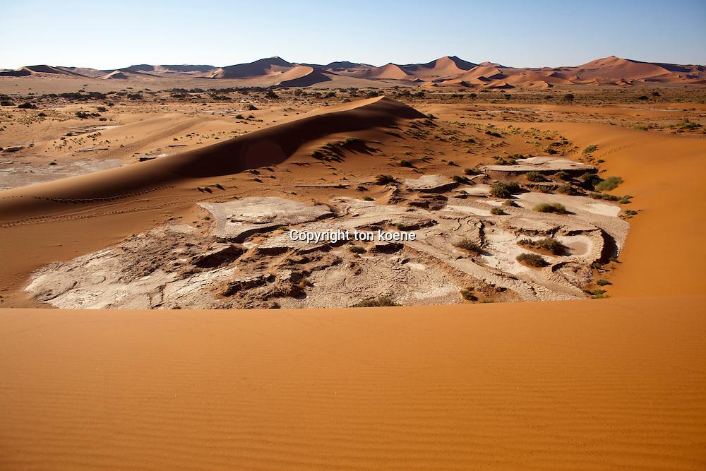 sossusvlei (dead valley) in Namib-Naukluft Park, Namibia