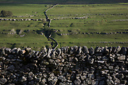 Littondale is a Yorkshire Dale in the Craven district of North Yorkshire, England, UK. Known for it's smooth rolling hills and traditional farmhouses that date from the 17th century, and traditonal dry stone walls.