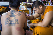 "22 MARCH 2013 - NAKHON CHAI SI, NAKHON PATHOM, THAILAND: A monk blesses a man's new Sak Yant tattoo at Wat Bang Phra during the tattoo festival. Wat Bang Phra is the best known ""Sak Yant"" tattoo temple in Thailand. It's located in Nakhon Pathom province, about 40 miles from Bangkok. The tattoos are given with hollow stainless steel needles and are thought to possess magical powers of protection. The tattoos, which are given by Buddhist monks, are popular with soldiers, policeman and gangsters, people who generally live in harm's way. The tattoo must be activated to remain powerful and the annual Wai Khru Ceremony (tattoo festival) at the temple draws thousands of devotees who come to the temple to activate or renew the tattoos. People go into trance like states and then assume the personality of their tattoo, so people with tiger tattoos assume the personality of a tiger, people with monkey tattoos take on the personality of a monkey and so on. In recent years the tattoo festival has become popular with tourists who make the trip to Nakorn Pathom province to see a side of ""exotic"" Thailand. The 2013 tattoo festival was on March 23.    PHOTO BY JACK KURTZ"