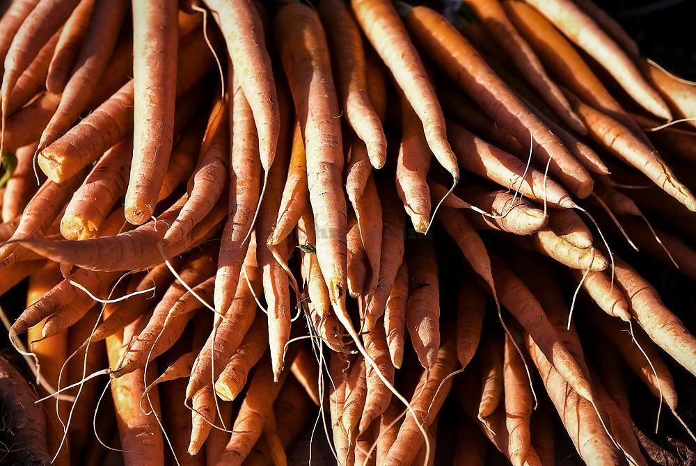 Fresh organic carrots at a farmers market.