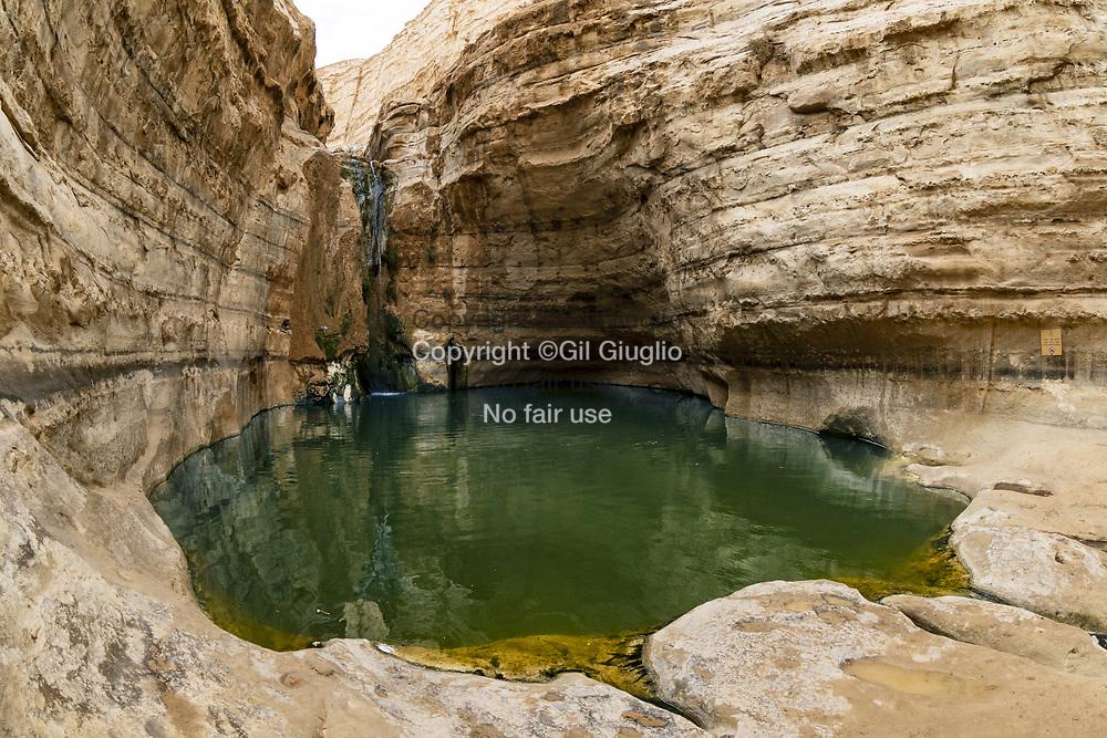 Israel, South District, Desert Negev, canyon of Ein Avdat // Israël, District sud, desert du Neguev, canyon Ein Avdat