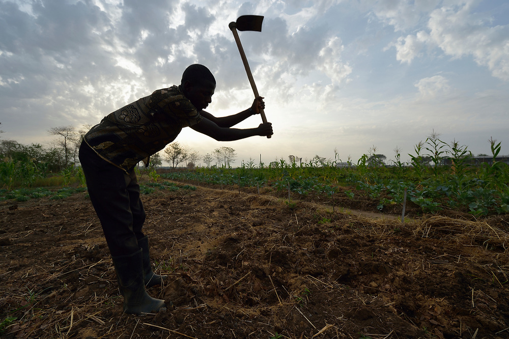A man works in the garden of the Catholic Health Training Institute (CHTI) in Wau, South Sudan. Run by Solidarity with South Sudan, an international network of Catholic organizations supporting the development of the world's newest country, the CHTI trains nurses and midwives from throughout the country. And it grows some of its own food.