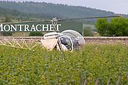 helicopter vineyard dom m picard chateau de ch-m chassagne-montrachet cote de beaune burgundy france