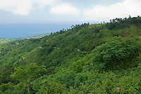 View of Dili, Timor-Leste (East Timor) from the mountains southwest of the city