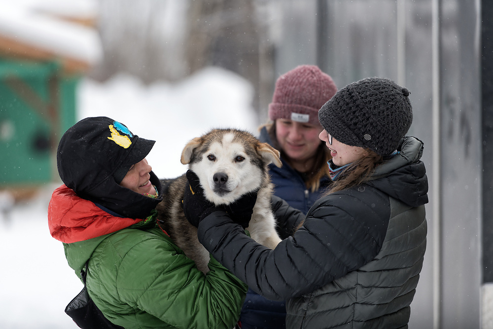 Stephanie Masters-Johnson and friends show some loving to a sled dog as they prepare for the 2020 Serum Run Expedition