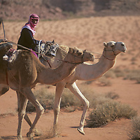 Bedouin youngsters ride camels across the desert before a race in the Wadi Rum, Jordan.