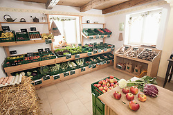 Fruits and vegetables in the farm, Bavaria, Germany