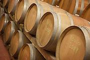 Barrels of wine in the cellar of La Ragnaie, an Italian wine maker, near the city of Montalcino in Tuscany, Italy