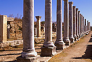 TURKEY, GREEK AND ROMAN Perge; columns of stoa, Agora market