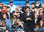 Chelsea's Antonio Conte looks on dejected after a missed chance during the Premier League match at the Stamford Bridge Stadium, London. Picture date: April 1st, 2017. Pic credit should read: David Klein/Sportimage via PA Images