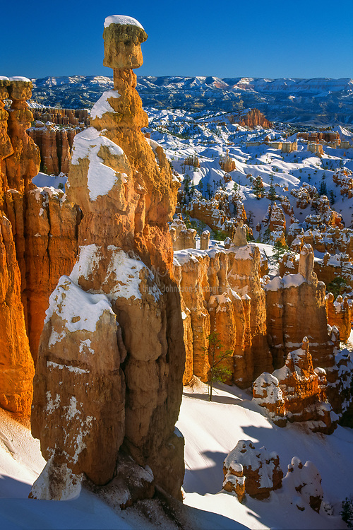 Bryce Canyon National Park is located in southwestern Utah in the United States. The major feature of the park is Bryce Canyon which, despite its name, is not a canyon but a giant natural amphitheater created by erosion along the eastern side of the Paunsaugunt Plateau.  Seen here is the formation known as Thor's Hammer in the middle of winter.