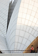 India, Delhi, The Bahai Lotus temple, Details of architecture