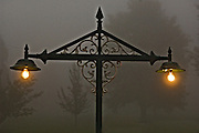 Misty evening in Dullstroom