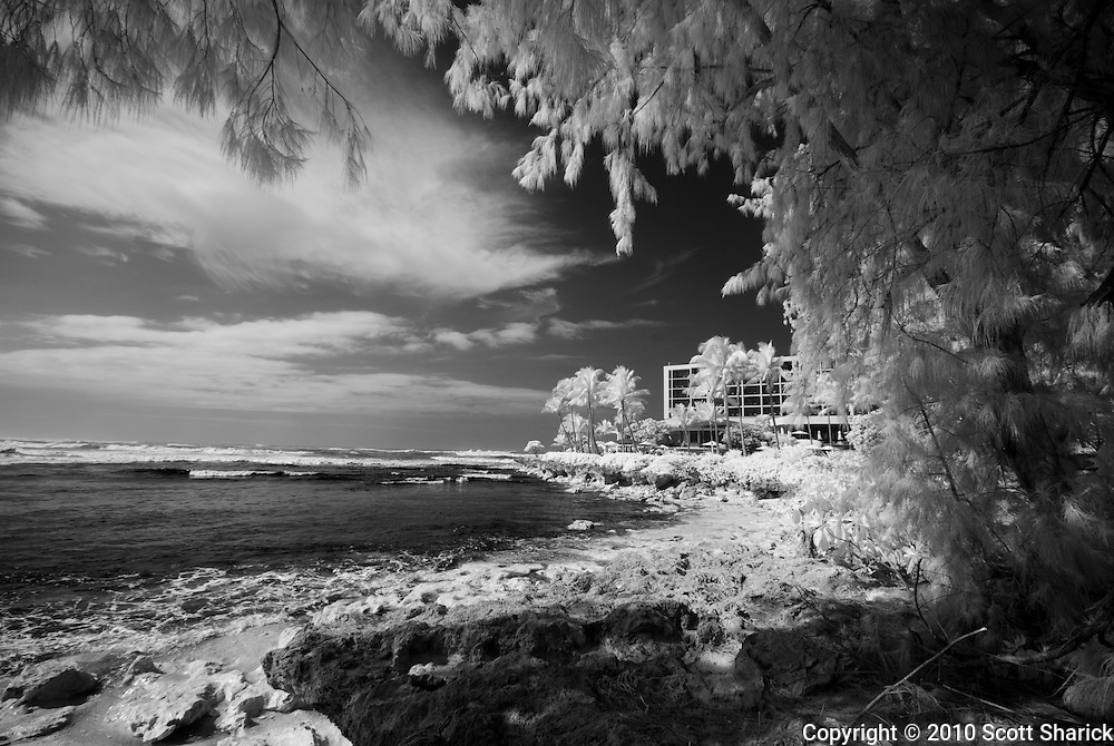 An infrared image of Turtle Bay Resort.