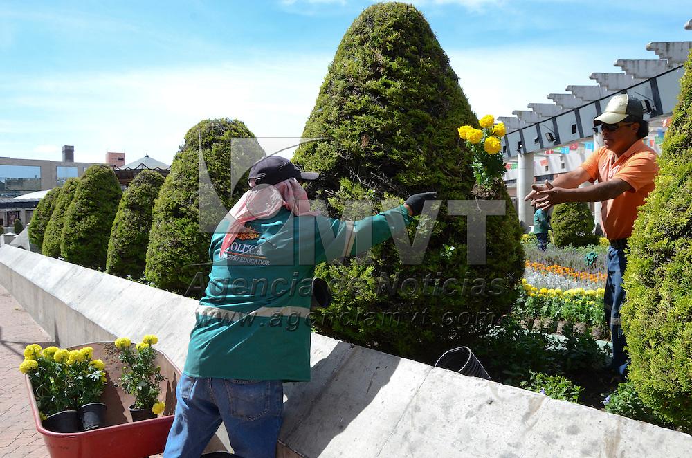 Toluca, Méx.- Trabajadores del ayuntamiento de Toluca realizan la instalación de plantas de cempasúchil como parte de los festejos de Día de Muertos, logrando que las áreas verdes de la ciudad estén listas para esta celebración. Agencia MVT / José Hernández