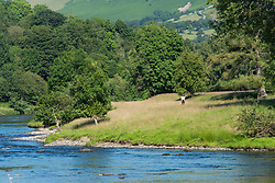 © Licensed to London News Pictures.15/07/2021. Builth Wells, Powys, Wales, UK.A young woman walks a dog on the banks of the River Wye on a hot sunny day at Builth Wells in Powys, Wales, UK. Photo credit: Graham M. Lawrence/LNP