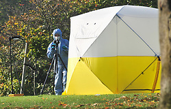 © Licensed to London News Pictures.03/11/2017.<br /> PENGE, UK.<br /> POLICE FORENSICS AT THE SCENE.<br /> A Murder investigation has been launched following a fatal stabbing in Penge at Betts Park, Anerley Road,<br /> Police were called at 19.22 hrs on Thursday 2 November to Betts Park,Penge near Bromley to reports of a male having been attacked. The victim was pronouced dead at the scene. The park is closed off by police.<br /> Photo credit: Grant Falvey/LNP