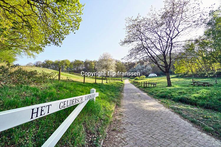 Nederland, Ubbergen, 14-4-2020  Lente op het parcours van de walk of wisdom, een pelgrimsroute door het rijk van nijmegen . De Elysese velden, onderdeel van een stuwwal uit de ijstijd . Foto: Flip Franssen