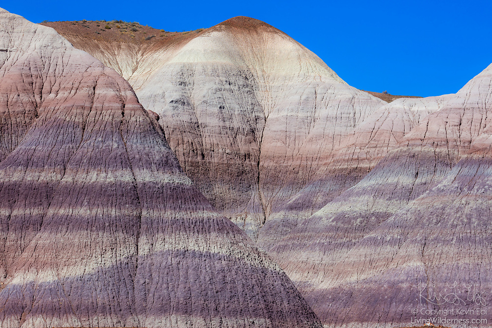 Sediment layers are visible in the badland hills of bluish bentonite clay in an area known as the Blue Mesa in Petrified Forest National Park, Arizona.
