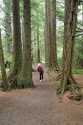 Alaska, Sitka.  Rain forest forest, example of Tongass National Forest, at the Sitka National Historic site.  Model released..Photo copyright Lee Foster, 510/549-2202, lee@fostertravel.com, www.fostertravel.com..